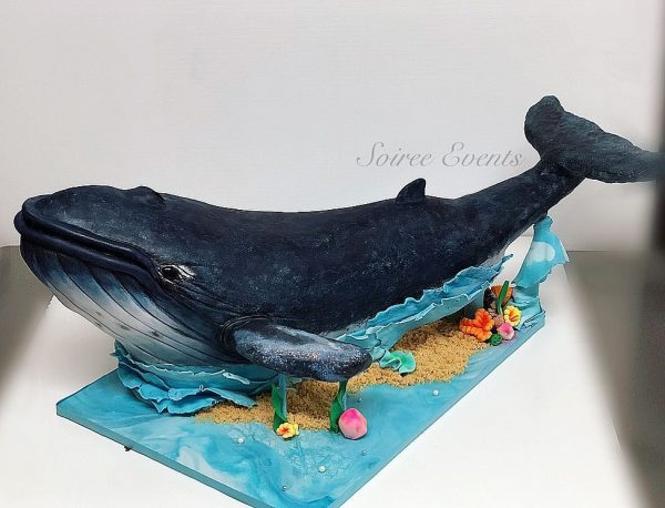 3d whale cake side